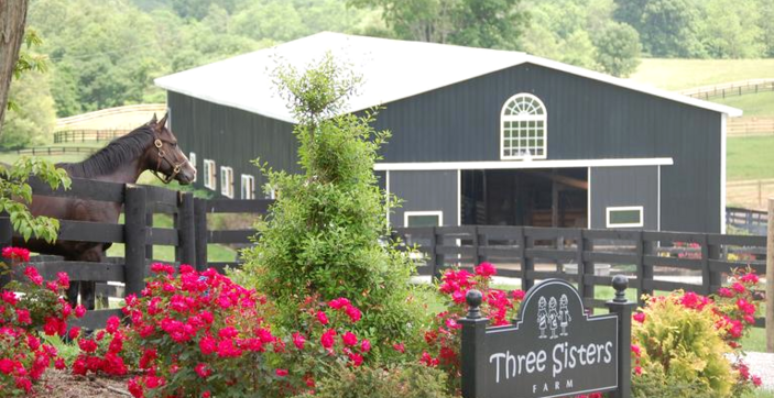 Three Sisters Farm | Midway, KY 40347